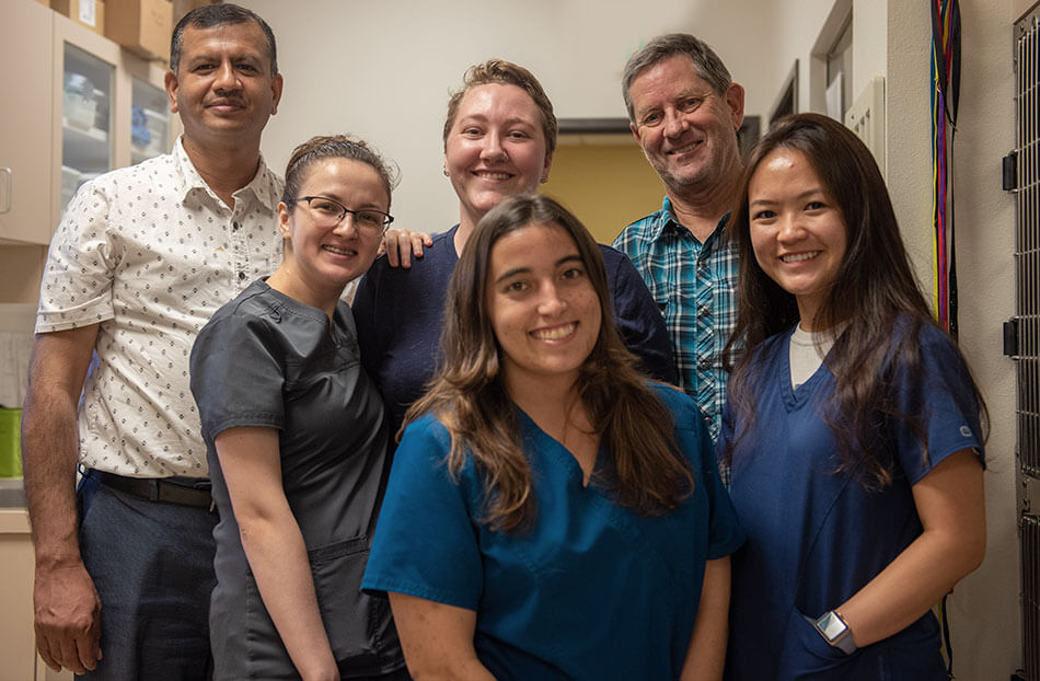 Laguna Beach Veterinary Medical Center - Pet Care for Dogs and Cats - Team Photo