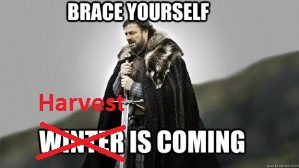 Harvest is coming