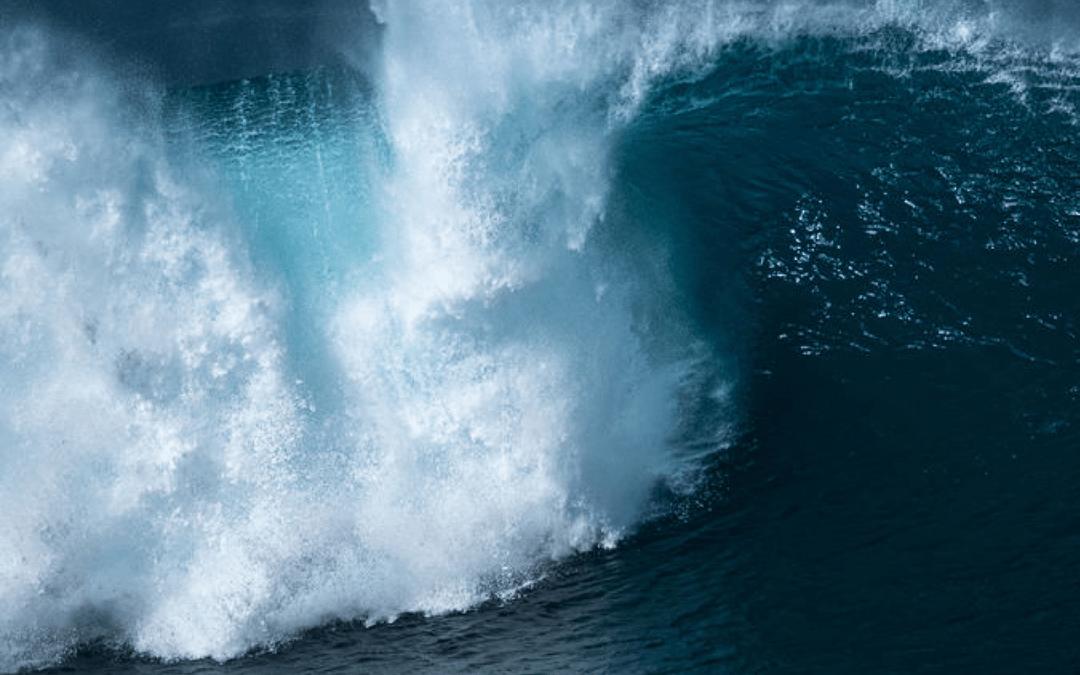 Tidal Waves in Insurance 2020