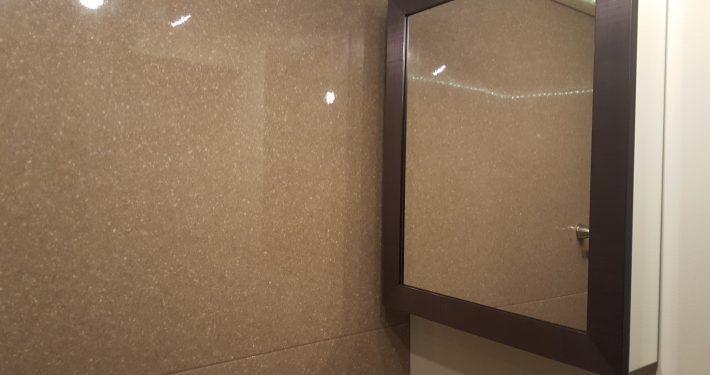Brown Basement Lavatory medicine cabinet