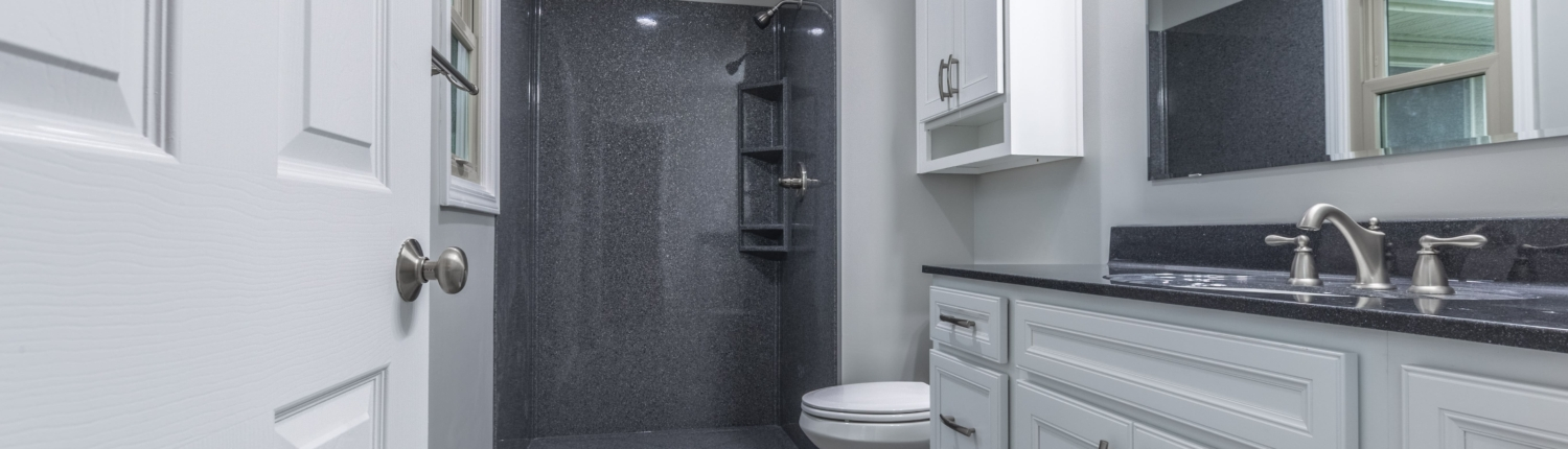 Walk in shower using Onyx in Raymore Remodel