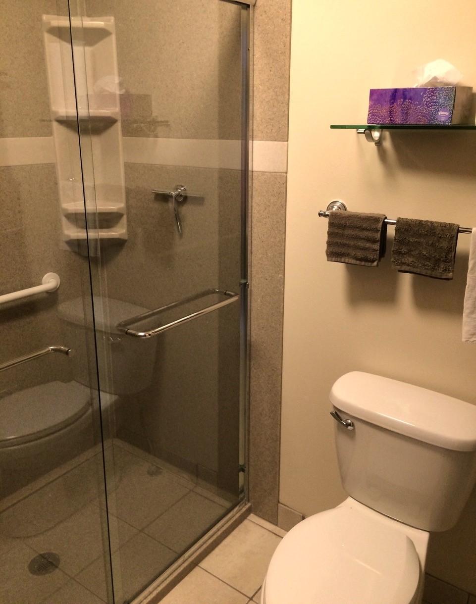bathroom remodel with door shuemaker