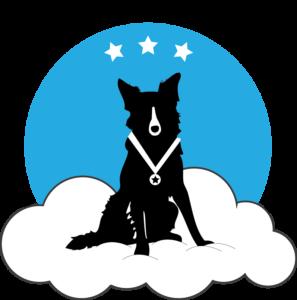 trainers - cloud k9