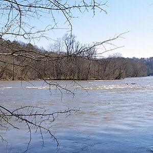 Life Flow of the Chatthoochee River