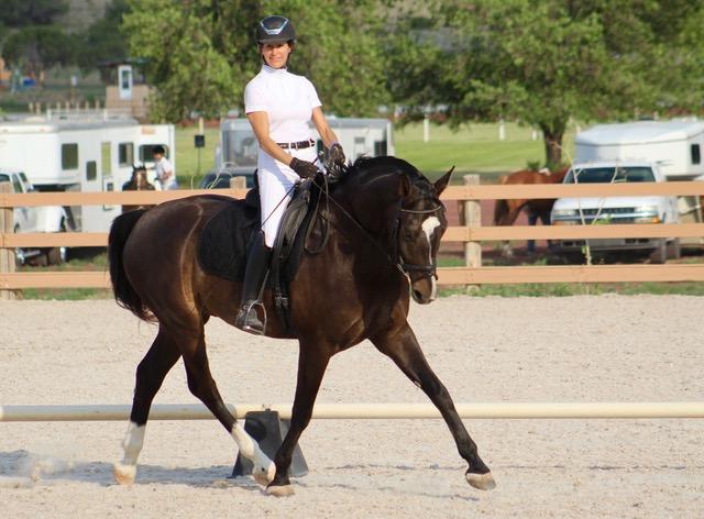 horse training santa fe new mexico