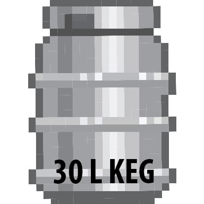 *NEW*ANALOG BREWING KEGS 30L