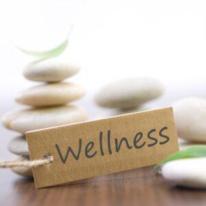 wellness spa billings mt