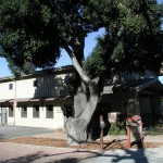Atascadero Commercial Building for Lease