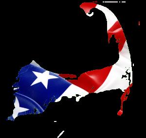 CCMSFI Logo