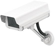 video camera portal