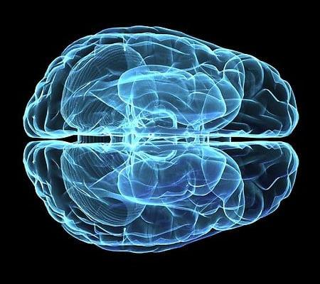 Dubin Clinic Brain Map