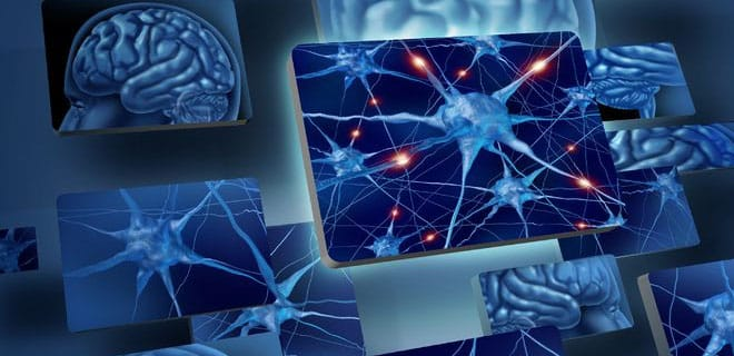 Glia Bain Neurons