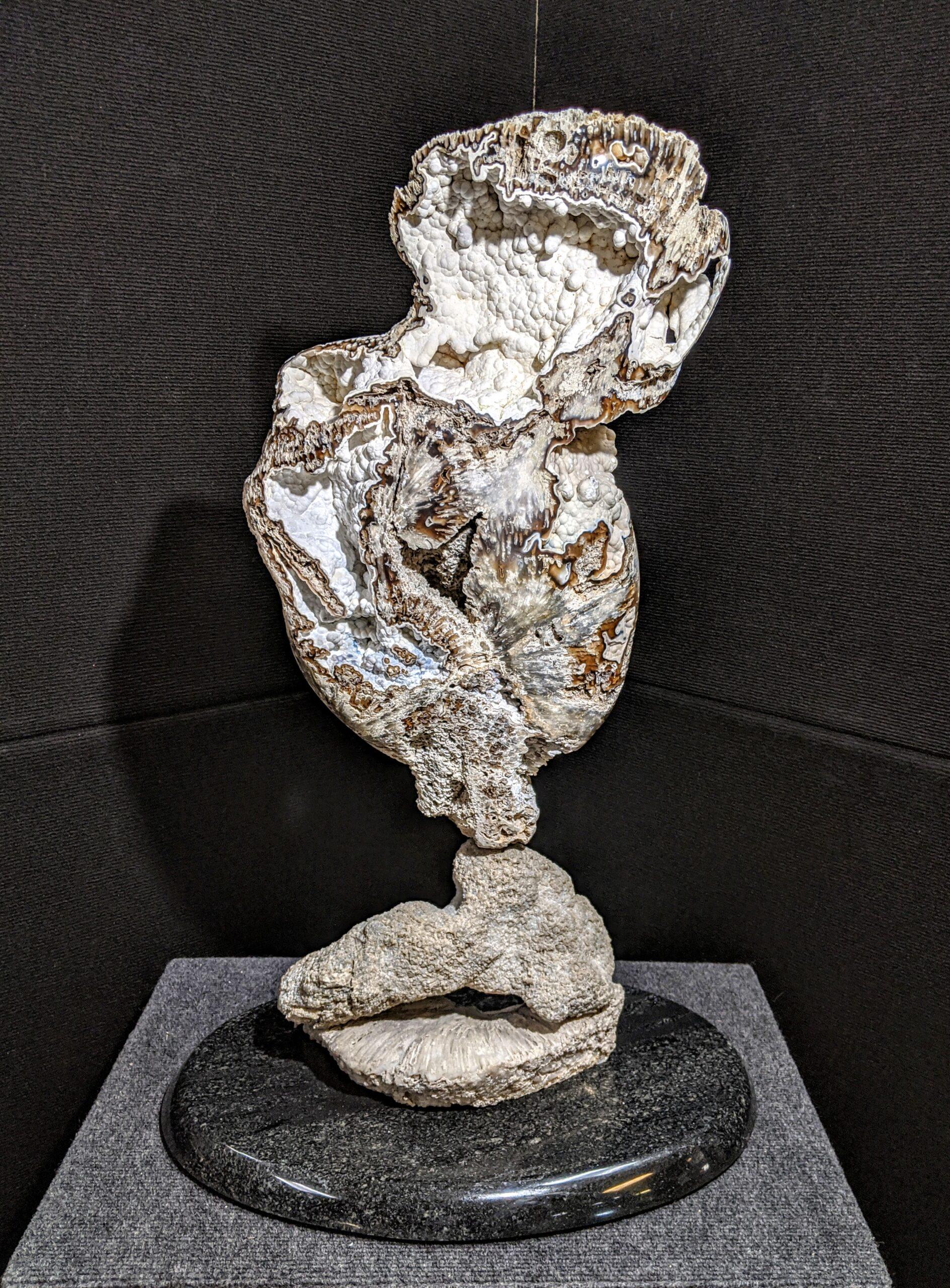 Agatized Coral Fine Art Sculpture