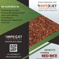 red_rice_br
