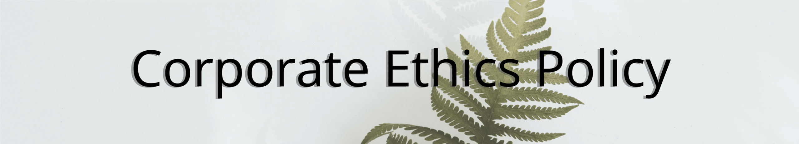 Corporate Ethics Header - An image of a fern against a blank wall with the words corporate ethics policy overlaid on top.