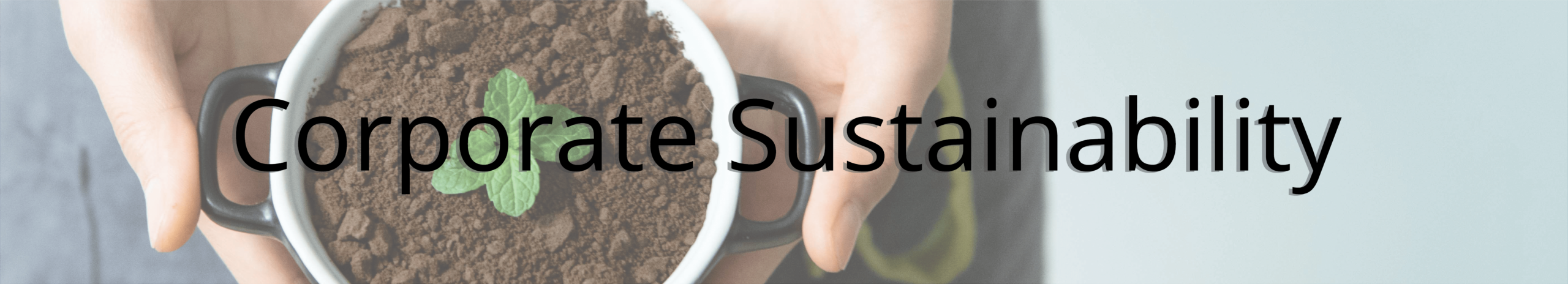 Corporate Sustainability Header - A person holding a plant with the words corporate sustainability overlaid on top.