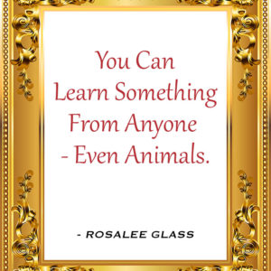 Reinventing Rosalee - You Can Learn Something From Anyone- Even Animals