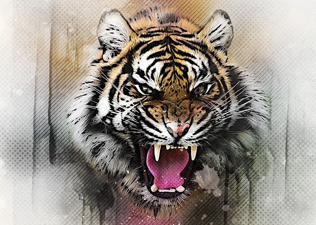 Tame The Tiger – Don't Get Stuck In Fear