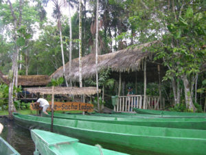 boats5