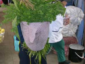 plant_img3