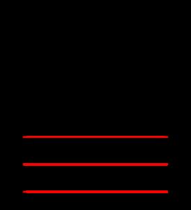 Müller-Lyer Illusion