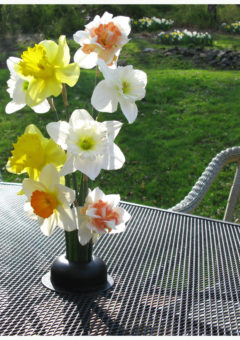 Flower Creation Station fits in your patio table umbrella hole ring