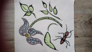 artwork of a flower, leaves and bug on a wall
