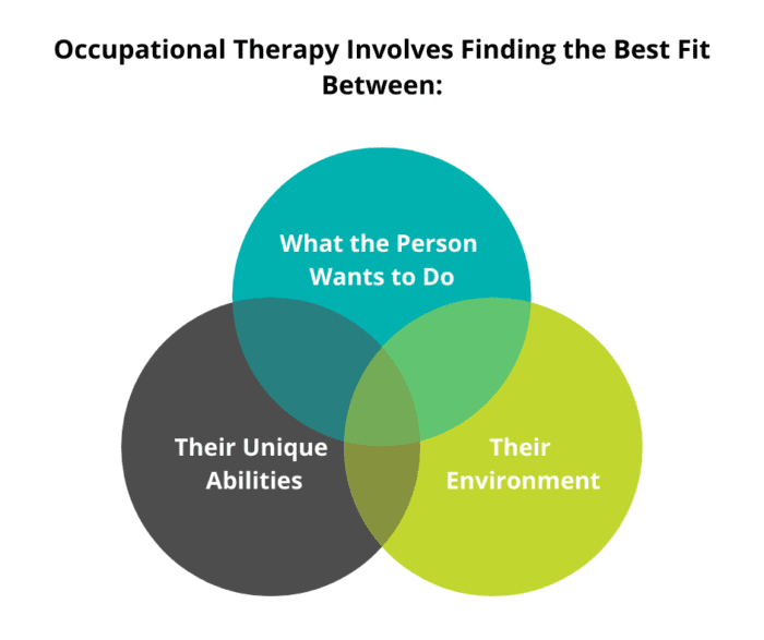 """Venn diagram of Occupational Therapy with """"what the person wants to do"""", """"their unique abilities"""", and """"their environment"""""""