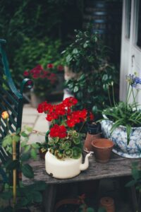 flowers in pots in front of a house