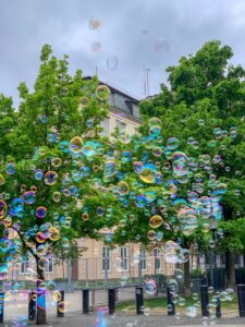 colourful bubbles outside in a park with two large green trees