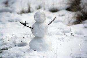 snowman in the forest to represent the holiday season