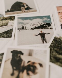 closeup of a collage of polaroid images