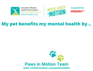 my pet benefits my mental health by