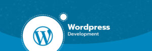Wordpress Web Developer Los Angeles