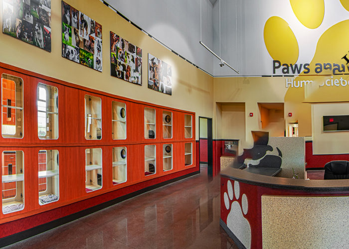 Special Projects | Featured Project: Paws and Claws