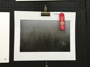 2nd place landscape-1