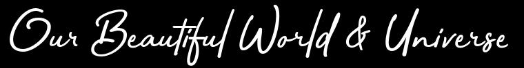 AWordPressSite