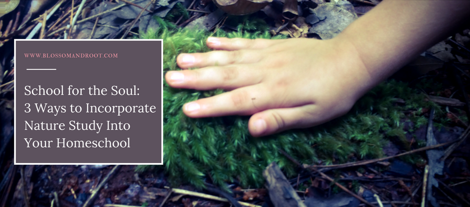 School for the Soul: 3 Ways to Incorporate Nature Study Into Your Homeschool