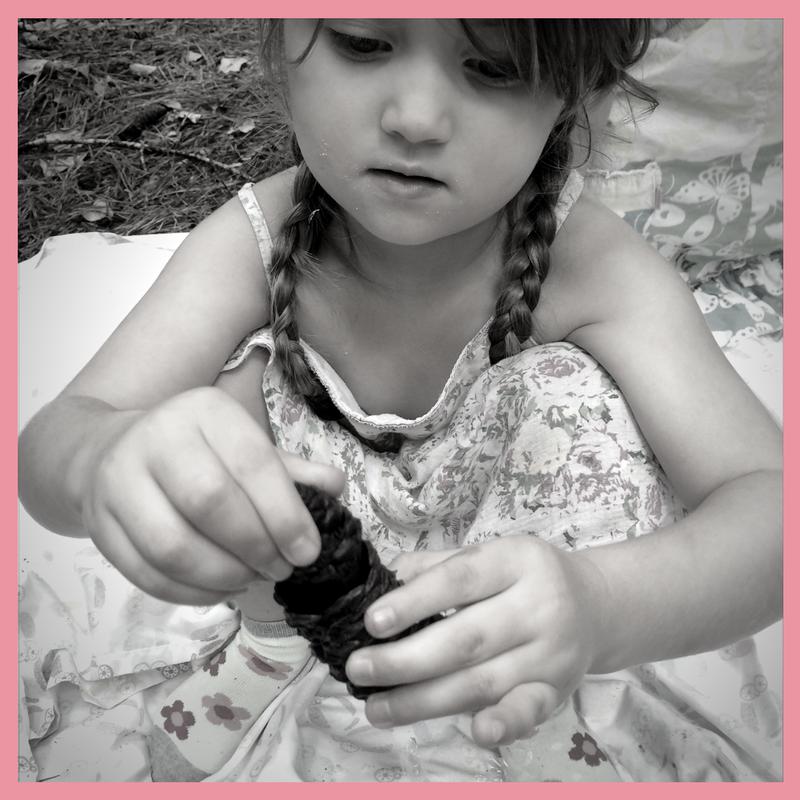 preschool curriculum for homeschool