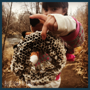 Our Winter Rhythm: A Typical Day of Homeschool with a Charlotte Mason Heart and an Unschooling Soul