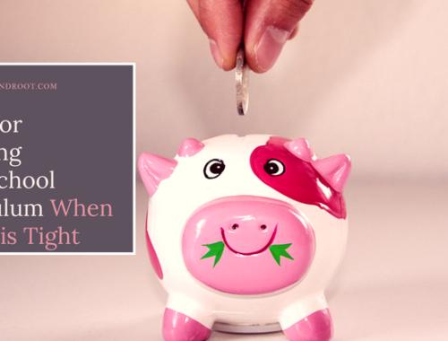 buying homeschool curriculum on a budget