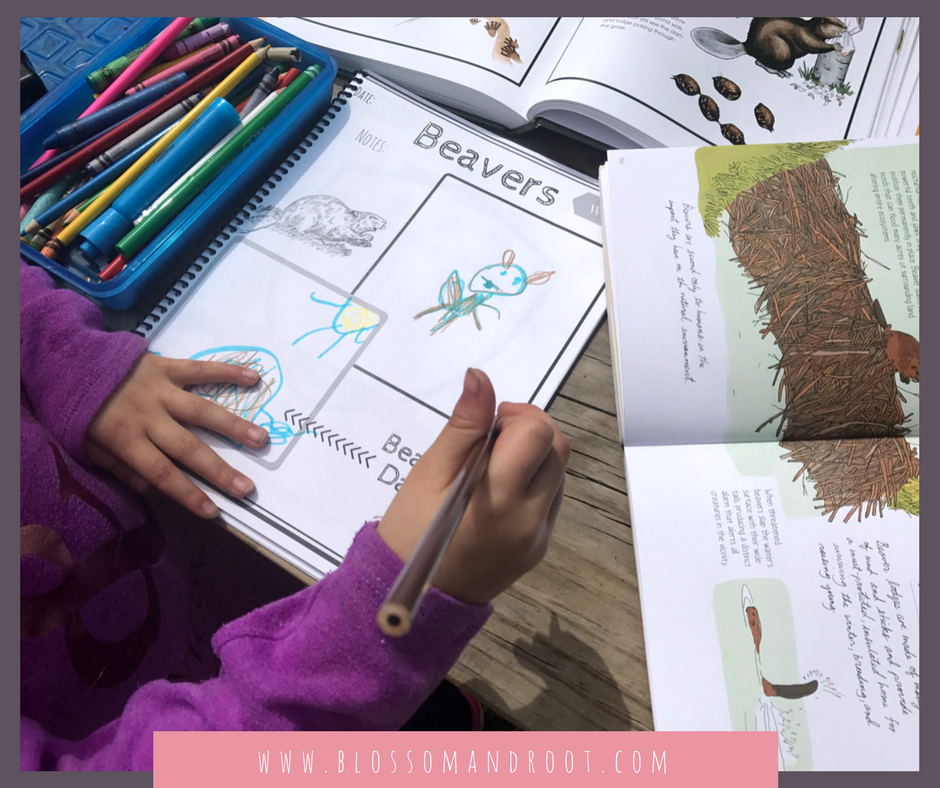 burgess book for children nature lore homeschool kindergarten