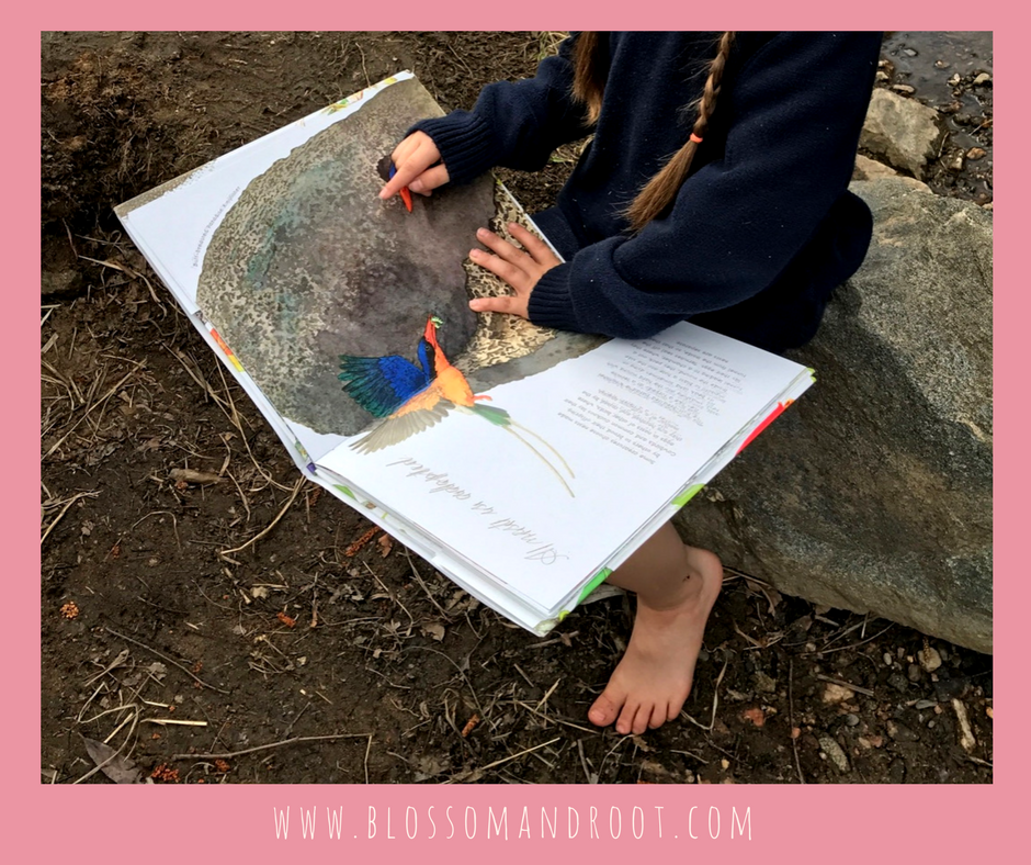 nature study and steam education in homeschool