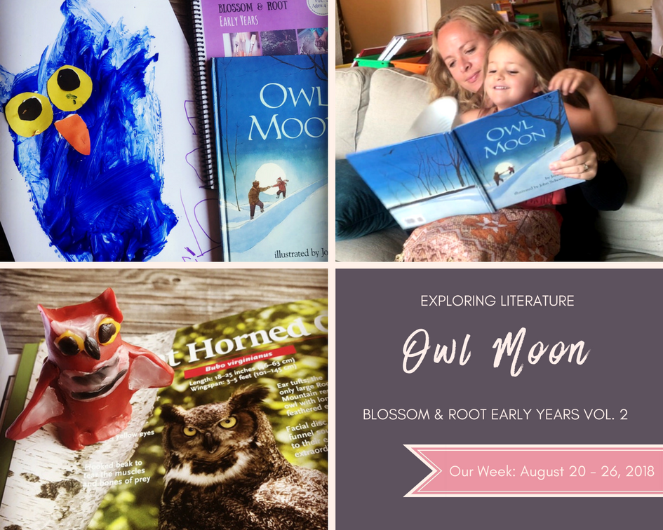homeschool blossom and root early years