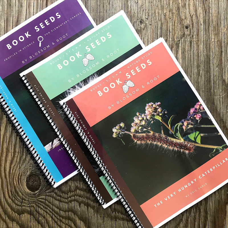 blossom and root book seeds