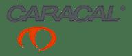 caracal-logo-video-production-vanguard-media