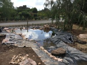 Wildlife Pond under construction