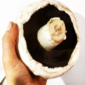Turkey & Basil Mushrooms