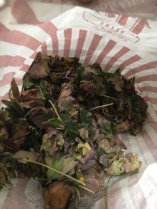 Hellebore flowers in paper bag
