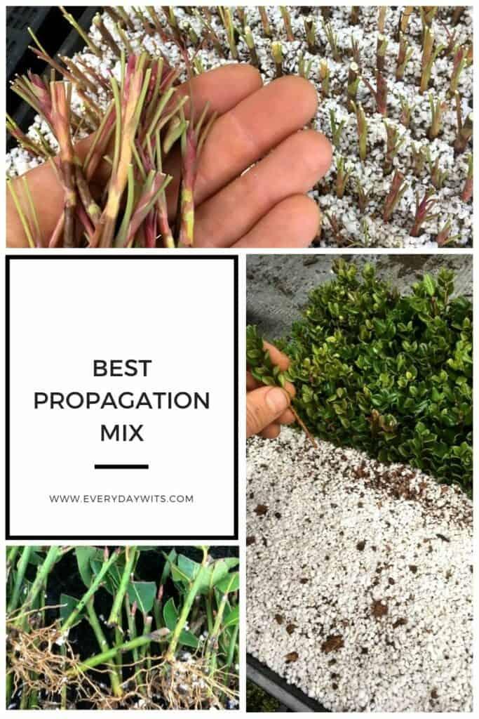 Best propagation mix